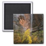 Zion National Park, Utah. USA. Ephemeral Magnets