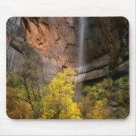 Zion National Park, Utah. USA. Ephemeral Mouse Pad