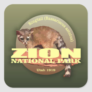 Zion NP (Ringtail) WT Square Sticker