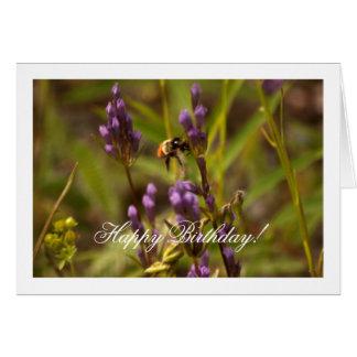 Zippy Bee; Happy Birthday Card