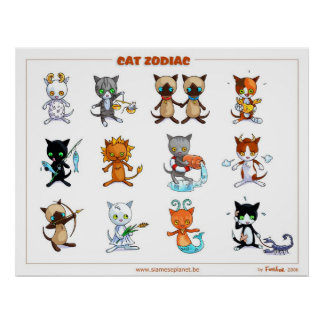 Zodiac Cats Poster