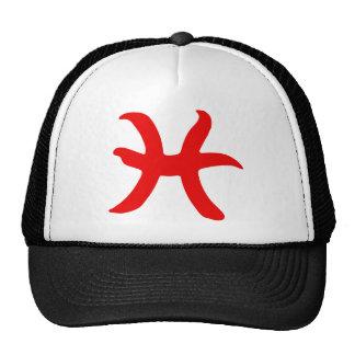 zodiac-pisces hat