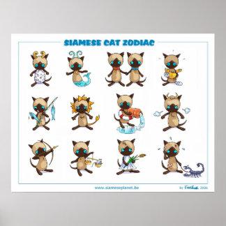 Zodiac Siamese Cats poster