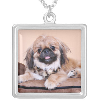 Zoe - Pekingese Silver Plated Necklace