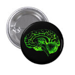 Zombie Brain Pinback Buttons