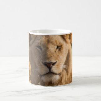 Zoo Animals mug. Coffee Mug