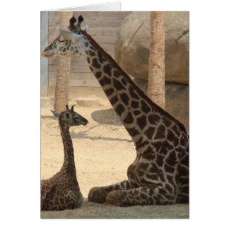 Zoo Series, Baby Giraffe and Mom Card