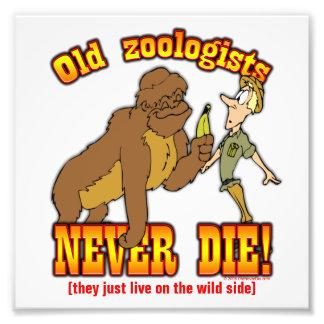 Zoologists Art Photo