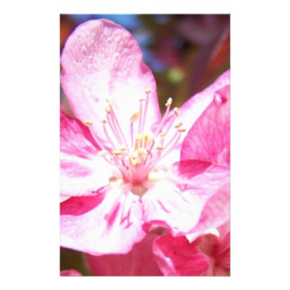 Zoomed in Crabapple Blossoms Personalized Stationery