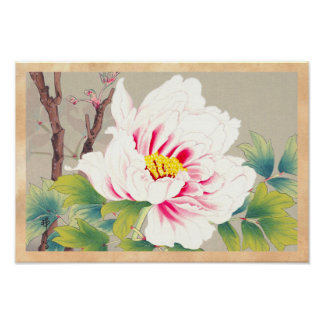 Zuigetsu Ikeda Pink Camellia japanese flower art Print