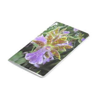Zygopetalum Orchid Pocket Journal